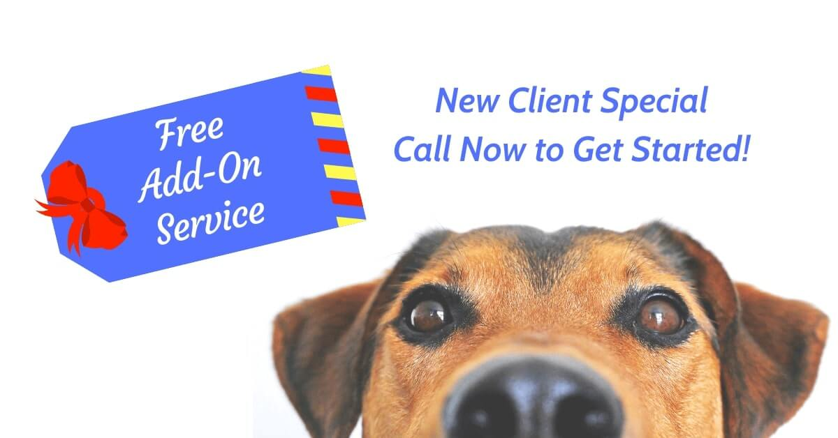 New Client Special Free Add-On Service